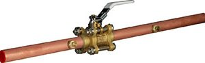 Ball Valves with Extensions